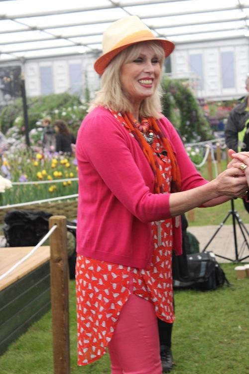 Joanna Lumley - Chelsea Flower Show 2013